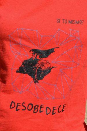 desobedece_1